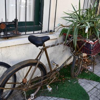 Bicycle planter